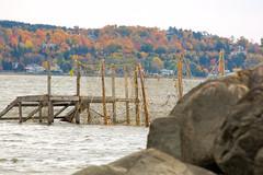 L'automne (Koucie) Tags: automne qubec stlawrenceriver fleuvestlaurent promenadesamueldechamplain