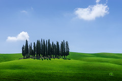 Tuscan Spring (Andreas Krappweis - thanks for 2 million views!) Tags: morning trees sunset italy classic clouds landscape spring farm wheat bluesky farmland tuscany fields layers cypress agriculture typical valdorcia rollinghills greenhills sonyalpha99 sony2870200g2