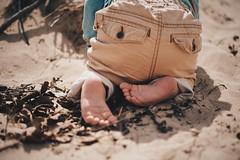 Everything is new (7thound) Tags: boy baby beach kid sand infant child play bokeh michigan lakemichigan greatlakes barefoot enfant shallowdepthoffield grandtraversebay elkrapids northernmichigan puremichigan childbabyinfantenfant