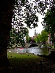 P1030132-Bruges, Belgium (CBourne007) Tags: city architecture buildings europe belgium bruges veniceofthenorth