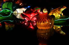 Pond Lanterns (pokoroto) Tags: autumn canada calgary pond october alberta lanterns 10 2015     kannazuki   themonthwhentherearenogods 27