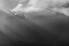 Paisaje Mínimo (Fran.Marchena) Tags: blackandwhite mountains blancoynegro fog clouds canon landscape venezuela paisaje nubes minimalismo niebla montañas franmarchena