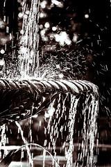 Falling Water (Wade Brooks) Tags: winter jan dukegardens 2016 winterwordlessonwednesday