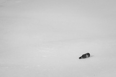 Bottle (-Jeffrey-) Tags: winter ice photography bottle nikon minimalism d5000