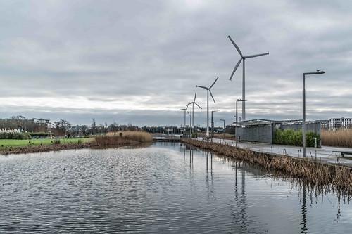 Wind Powered Public Park In Clongriffin Dublin [Father Collins Park]-110969