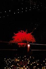 (.Kaisu.) Tags: 35mm tallinn estonia fuji pentax m42 spotmatic analogue spii supertakumar fujipro400h 3535 asahipentaxspotmatic supertakumar3535 vintageanalogue asahipentaxspotmaticspii