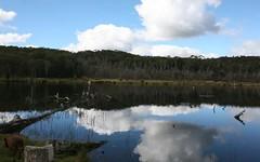 189 Warra Forest Road, Mount Mitchell NSW