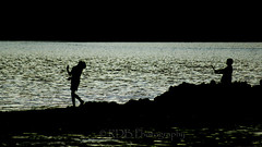 Boys in Silhouette 2 (C & R Driver-Burgess) Tags: ocean sea two beach boys water mouth river coast nationalpark sticks sand couple rocks surf play pair young calm estuary flats together pile shore inlet tidal abeltasman gentle coastalwalk