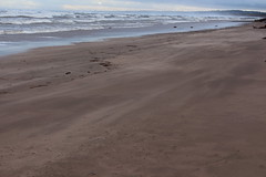 Blowing Sand,Sands of St Cyrus,St Cyrus National Nature Reserve_jan 16_683 (Alan Longmuir.) Tags: aberdeenshire grampian blowingsand stcyrus shiftingsands sandsofstcyrus stcyrusnationalnaturereserve
