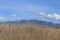 Postales de Mi Pueblo: Cerro de San Nicols (Xellif) Tags: naturaleza nature mxico landscape jalisco paisaje postal colotln