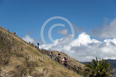 Trail steps, Diamond Head, Honolulu, Hawaii (dkjphoto) Tags: volcano hawaii unitedstates hike tourists trail descend honolulu