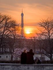 Staring at the sunset in Paris (Matthieu Manigold) Tags: light sunset people paris france tower colors beautiful de soleil nikon au coucher jardin eiffel des toureiffel tuileries couleur
