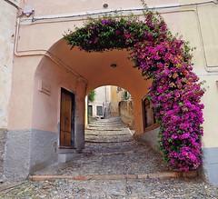 BORGIO VEREZZI - Liguria (cannuccia) Tags: paesaggi landscape borgioverezzi liguria archi strade scalinate 100commentgroup scale