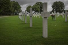 Netherlands American Cemetery Memorial (Matt H. Imaging) Tags: netherlands cemetery utrecht military sony nederland depthoffield slt limburg baarn margraten a55 nacm slta55v sal35f18 ©matthimaging