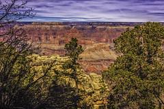 Grand Canyon 2016 (165 of 430) (mrmeliska) Tags: arizona grandcanyon northernarizona 2016 mikemeliskaphotographer