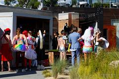 20160313-21-MONA Market mardi gras theme (Roger T Wong) Tags: people grass market lawn australia mona moma tasmania hobart mardigras stalls 2016 canonef24105mmf4lisusm canon24105 canoneos6d museumofoldandnewart rogertwong