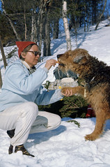 Rastepause (Trondheim byarkiv) Tags: winter dog snow norway easter norge hotdog vinter archive norwegen hund archives noruega trondheim srtrndelag pske sn noorwegen trndelag arkiv trondhjem grillplse trondheimkommune trondheimbyarkiv b2021 ingerschulstad torh49b2