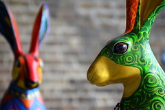 Coinn (Keith Mac Uidhir  (Thanks for 3.5m views)) Tags: ireland dublin color colour rabbit bunny art colors easter colorful colours display pascua irland exhibition pscoa colourful ostern easterbunny dublino irlanda irlande pasqua pasko ierland easterrabbit irska wielkanoc pques dubln irlandia lirlanda irsko  paskalya airija  irlanti  cng  iirimaa ha     rorszg         rlnd