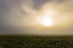 IMG_2395-Bearbeitet.jpg (MSPhotography-Art) Tags: morning autumn nature misty clouds germany landscape deutschland nebel outdoor herbst natur wolken alb landschaft wandern wanderung badenwrttemberg swabianalb burghohenzollern albtrauf schwbschealb