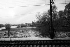 another land (nVa17) Tags: winter blackandwhite bw tree train blackwhite russia branches pole rails bnw blackandwhitephotography    viewfromthewindow      anotherland
