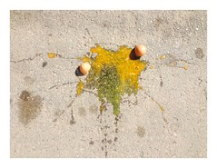 (adele di nunzio) Tags: easter egg pollock