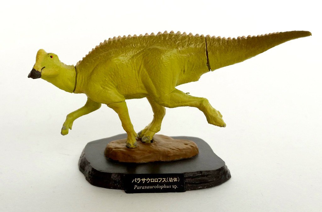 The Worlds Newest Photos Of Ornithischian Flickr Hive Mind