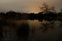 Lac de Millas la nuit (sergecos) Tags: longexposure lake water night landscape nikon eau nightscape lac paysage nuit waterscape poselongue d7000