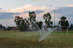 Yelarbon, Queensland (smjbk) Tags: grass australia sprinkler queensland yelarbon