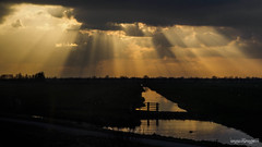 Rays (dynode.nl) Tags: sun holland clouds landscape evening crepuscularrays southholland