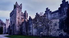 Tramonto al castello di Howth (alceccanti) Tags: ireland sunset howth dublin eire dublino irlanda howthcastle sonyphotographing sonysti sonyslta58 captureone8windows easter2016 castellodihowth pasqua2016 sonydt28250mm