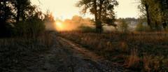 morning (2) (MarcelXYZ) Tags: morning trees light nature grass sunrise canon drohiczyn cesarz marcelxyz