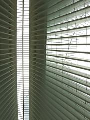 Oculus #4 (Keith Michael NYC (1 Million+ Views)) Tags: nyc newyorkcity ny newyork path manhattan worldtradecenter calatrava wtc oculus santiagocalatrava downtownnewyork downtownmanhattan transportationhub 1wtc oneworldtradecenter