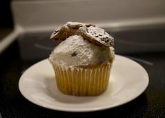 Cupcake (walker_bc) Tags: cupcake