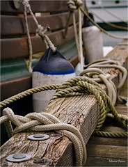 marina knots (marneejill) Tags: up closeup marina bay boat dock rope tied knots cowichan