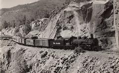 Elbert Creek, CO 1953 (twm1340) Tags: railroad train colorado silverton steam co locomotive durango riogrande 473 drgw