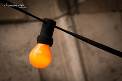 The lamp (v.Haramustek) Tags: street light orange lamp colors hungary outdoor budapest hanging jantar