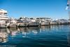 TRANQUIL CANNES MARINA (RUSSIANTEXAN) Tags: france marina photography nikon cannes provence fr 2010 dazur anvar d700 khodzhaev svetan alpescote
