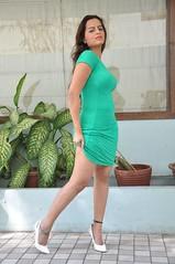 Bollywood Actress Meghna Patel Photos Set-4-HOT PHOTOS (41)