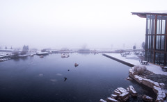 fade into the mist (almostsummersky) Tags: wood morning windows winter white mist snow storm ice fog wisconsin campus shark frozen spring dock pond rocks frost chairs deck verona tables epic cassiopeia epicsystemscorporation