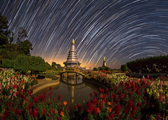 Star Trails (Fevzi DINTAS) Tags: longexposure travel bridge flowers sky holiday tourism nature pool night garden stars thailand temple photography star pagoda amazing asia space awesome trails places visit fisheye galaxy planets astronomy moment universe nationalgeographic destinations samyang canoneos6d paza140