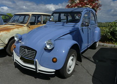 Citron - 2 CV 6 Special (Thethe35400) Tags: auto car automobile voiture coche bil carro bll cotxe deuche deudeuche