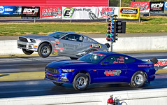 Mustang Cobra Jet factory race cars (Thumpr455) Tags: auto blue ford car race georgia nikon factory commerce april autoracing mustang wheelstand dragracing wheelie racecars 2016 nmra nmca cobrajet atlantadragway d5500 worldcars afnikkor70200mmf28vrii