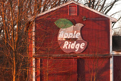 Faded glory (DjD-567) Tags: old sign farm nh weathered apples boscawen