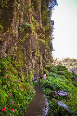 Camino al Ro Iguaz (Jorgelina Dromedari) Tags: naturaleza argentina brasil waterfall natural selva waterfalls cataratas iguazu misiones parquenacional cataratasdeliguazu parquenacionaliguazu