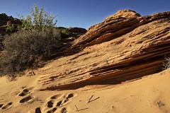 20160323-IMG_2482_DXO (dfwtinker) Tags: arizona water rock stone sunrise sand desert w page dfw whitaker glencanyondam pageaz kevinwhitaker dfwtinker ktwhitaker worthtexastraveljapan whitakerktwhitakerktwhitakervideomountainstamron
