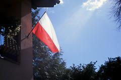 National Flag Day / Dzień Flagi (pedro4d) Tags: film rollei analog fuji flag polska polish velvia 100 35 flaga
