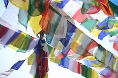 1000+ Hundred Flags (Jgunns91) Tags: travel nepal travelling religious temple nikon asia peace buddhism wanderlust explore discover natgeo swayumbhunath
