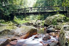 2016_05_01_0010-1 (ImagesbyAB) Tags: bridge water landscape naturalbridge springbrooknationalpark