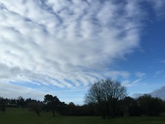 Crazy World of Chemtrails - WTF - South Western Ireland - April 2016 (firehouse.ie) Tags: weather control sinister nwo manipulation spray poison chemtrail population modification climate chemtrails spraying manipulating haarp modifying notcontrails nanaparticles