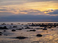 Bognor NovemberPB165936_29 (tony.rummery) Tags: sunset england seascape beach reflections sussex rocks unitedkingdom olympus gb southcoast groyne bognor englishchannel bognorregis breakwater mft microfourthirds epm1